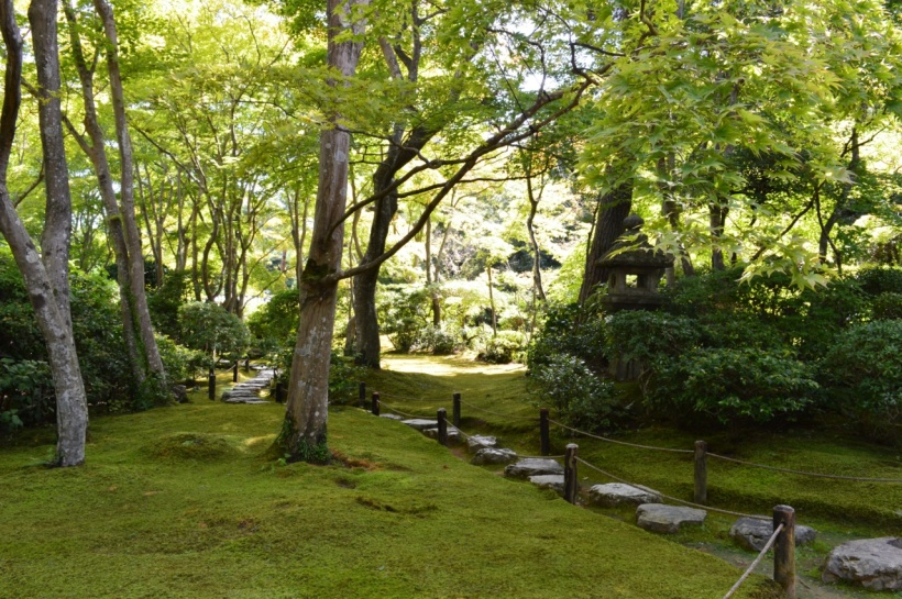 The samurai garden
