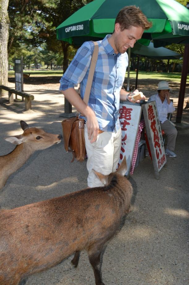 Deer feeding time!