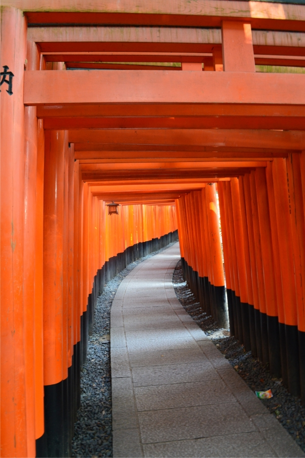"""I didn't count but I don't think """"a thousand"""" is an exaggeration when it comes to the torii gates."""