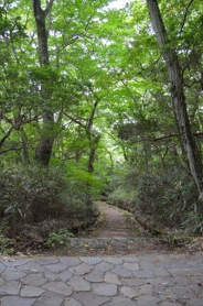 The hiking trail down from Owakudani