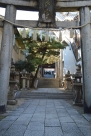 The entrance to a shinto temple